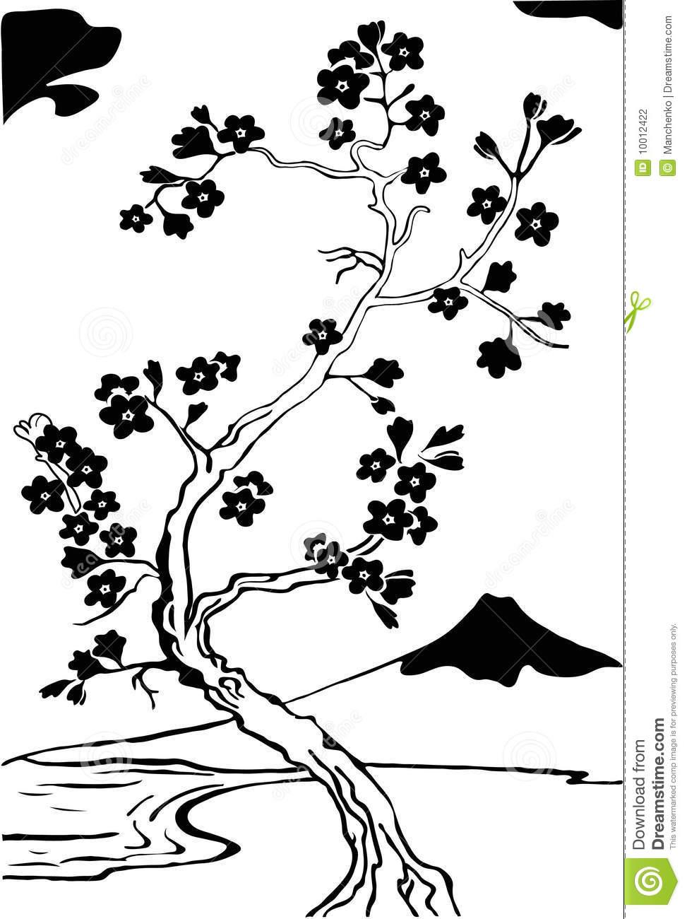 973x1300 Rbol Flor Cerezo Estilo Japon Foto Archivo