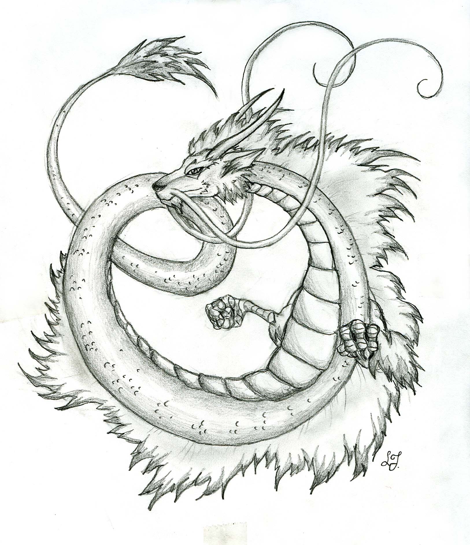 1626x1888 Japanese Dragon By Lizzy23