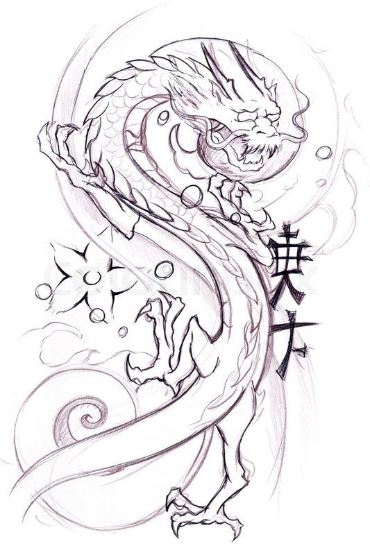 533x800 Tattoo Art, Sketch Of A Japanese Dragon Stock Photo Colourbox