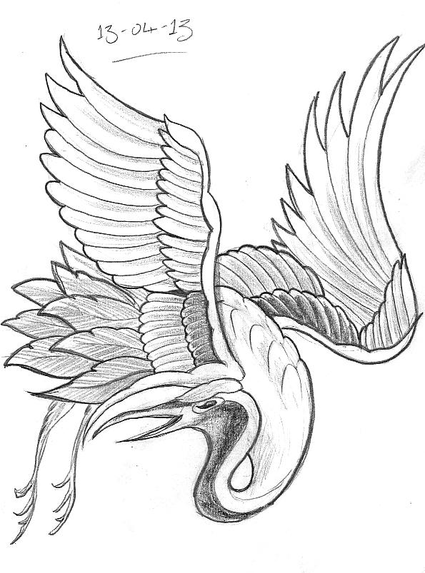 595x803 Tattoo Sketch A Day Birds April 8th