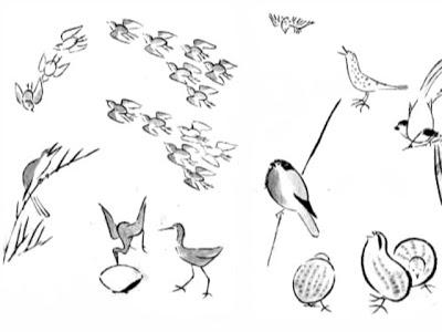 400x300 The Helpful Art Teacher On Painting Birds