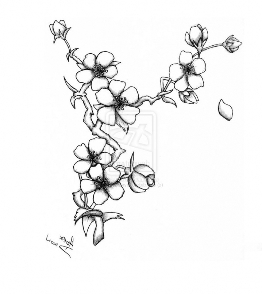 912x1024 Cherry Blossoms Drawing Cherry Blossom Flower Drawing 1000 Images
