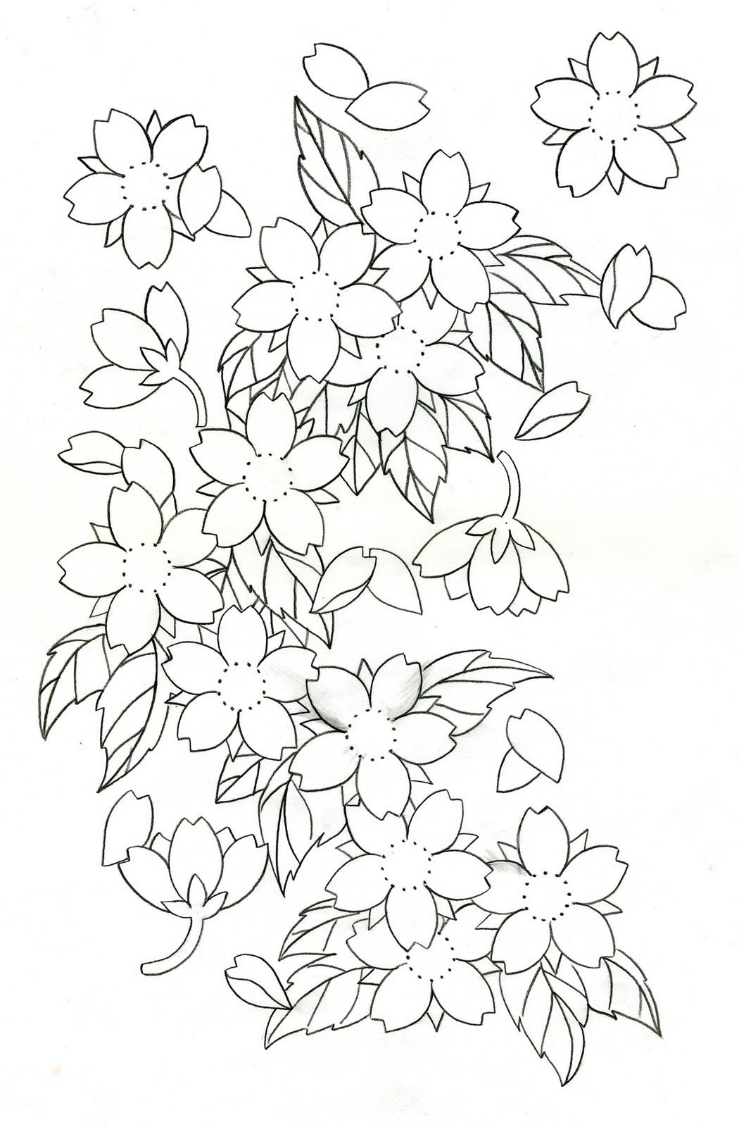 1050x1600 Cherry Blossoms. Drawing Flowers Cherry Blossoms