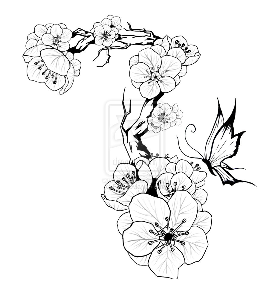 900x953 Plum Blossom Tattoo Design By On @