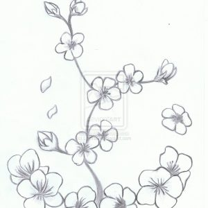 300x300 Ese Cherry Blossom Flower Drawing Black And White Floral