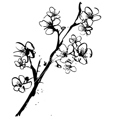 380x400 Japanese Cherry Blossom Flower Drawing Black And White