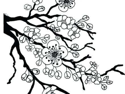 440x330 Cherry Blossom Flower Coloring Page Fun 8 Japan Pages Geisha