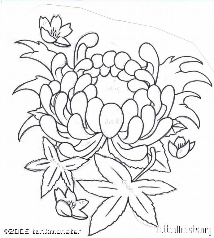 691x768 Japanese Flowers Drawings