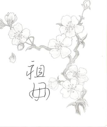 352x418 Image Result For How To Draw A Cherry Blossom Tree Step By Step