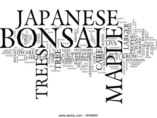 640x482 Japanese Maple Trees Stock Vector Images