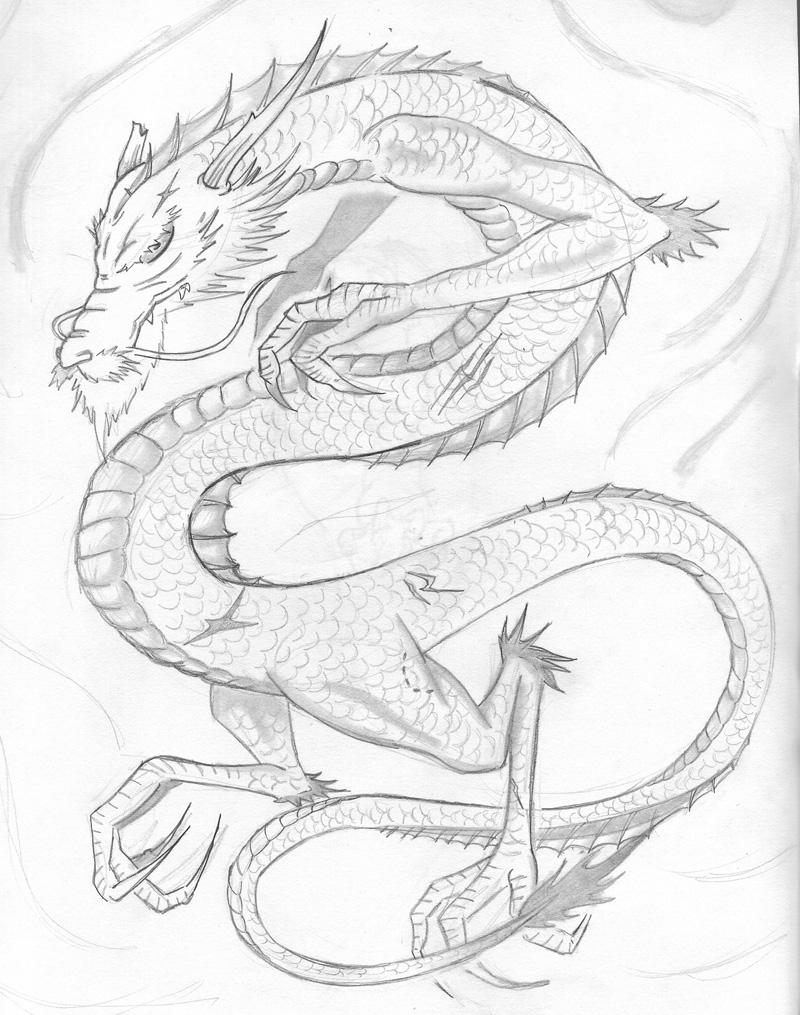 800x1015 Japanese Dragon 01