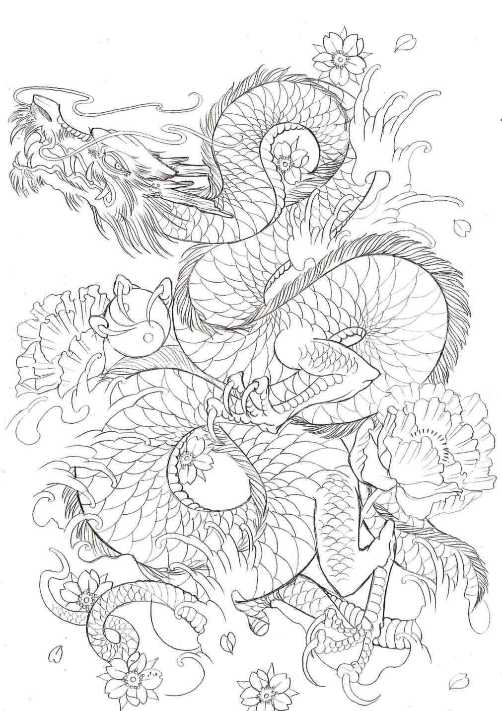 1011x1431 Japanese Dragon Tattoo Outline