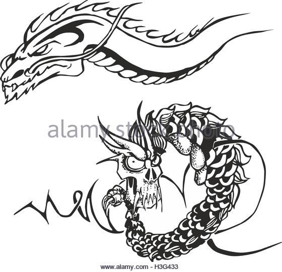 560x540 Tattoo Dragons Stock Photos Amp Tattoo Dragons Stock Images