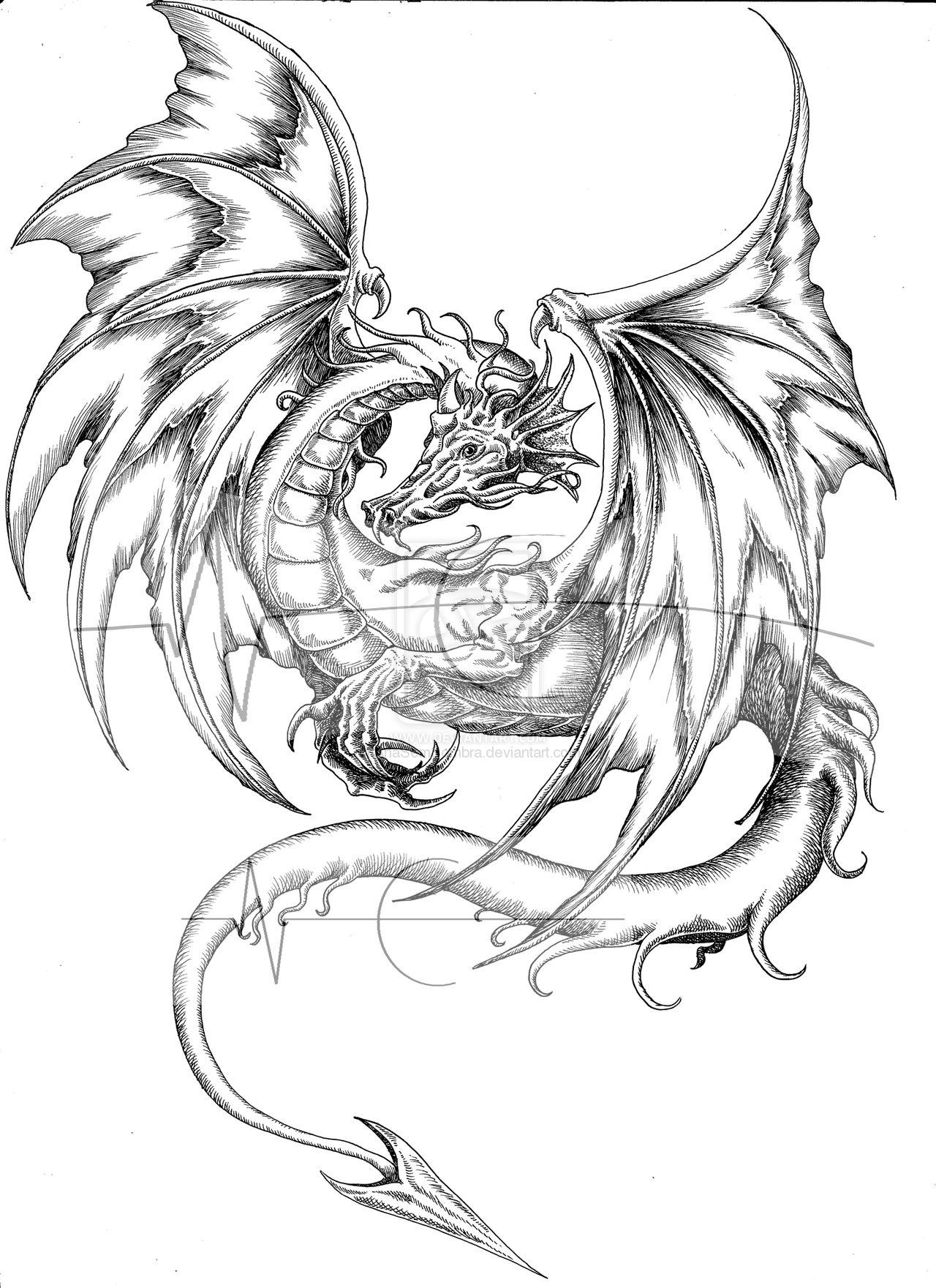 Japanese Dragon Line Drawing at GetDrawings | Free download
