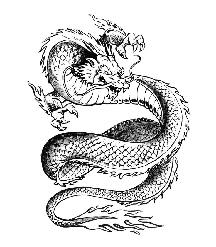 Japanese Dragon Tattoo Drawing