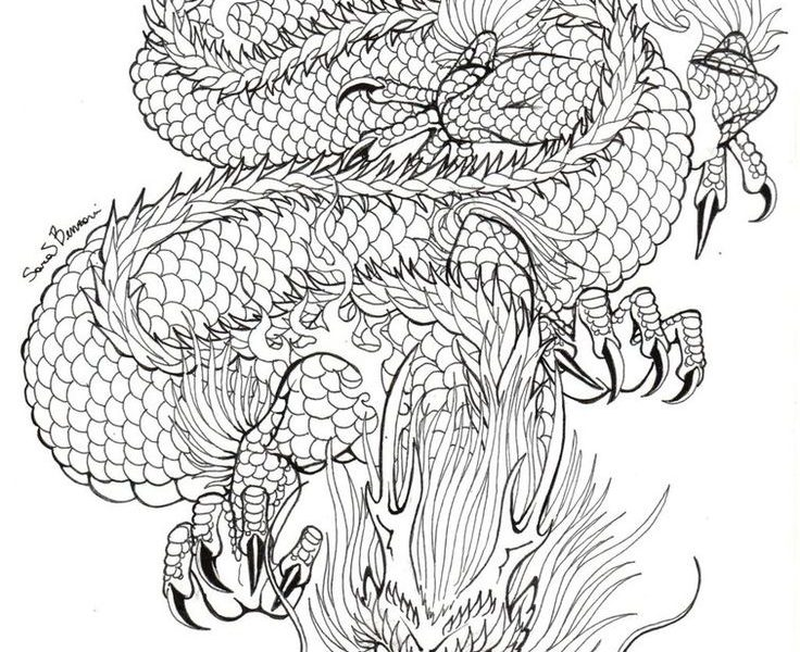 736x600 Download Dragon Tattoo Drawing