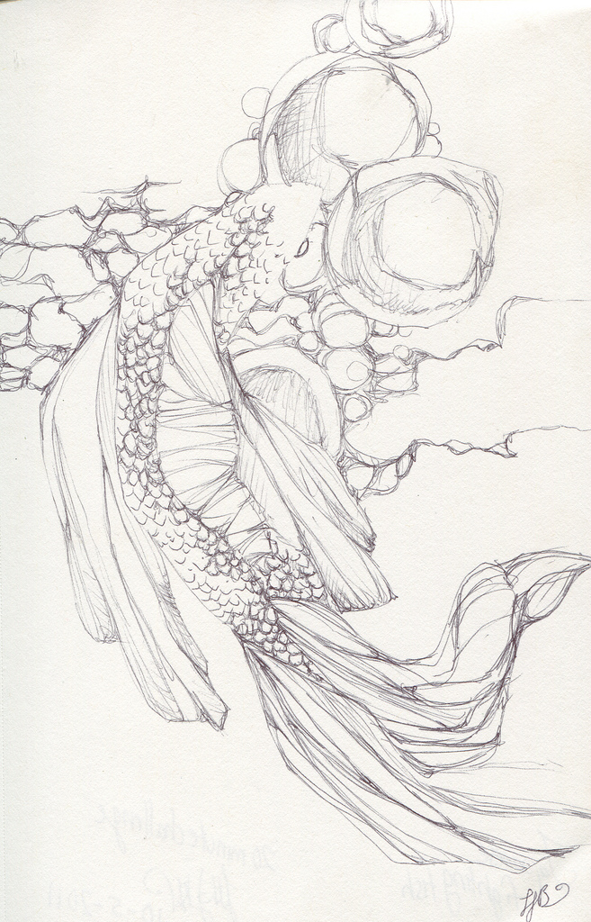 657x1024 Japanese Fighting Fish This Is Another 20 Minute Drawing.