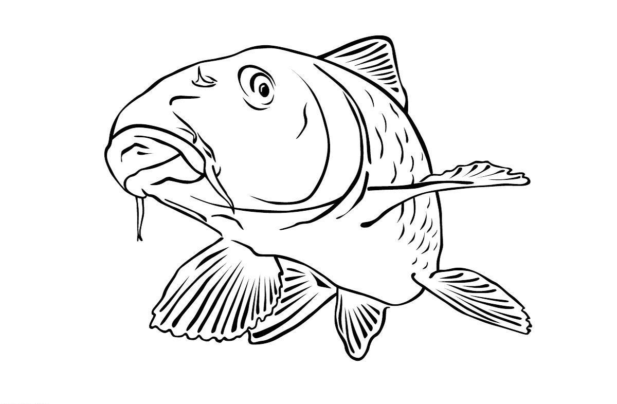 Ungewöhnlich Fisch Bedruckbare Malvorlagen Fotos - Malvorlagen Von ...