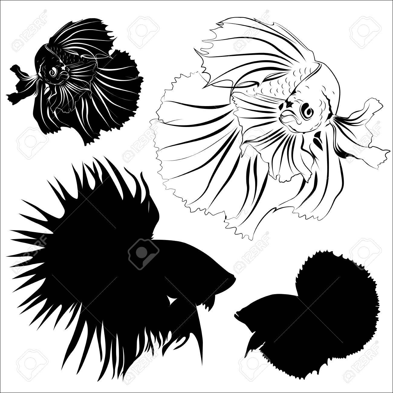 1300x1300 Silhouette, Carving, And Drawing Of Siamese Fighting Fish Vector