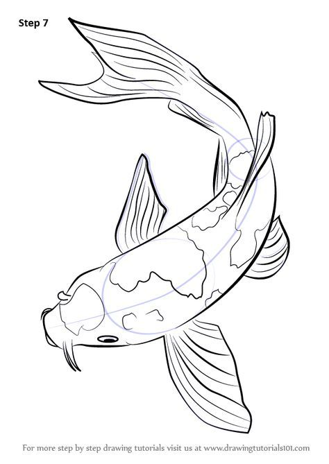 474x669 Step By Step How To Draw A Koi Fish