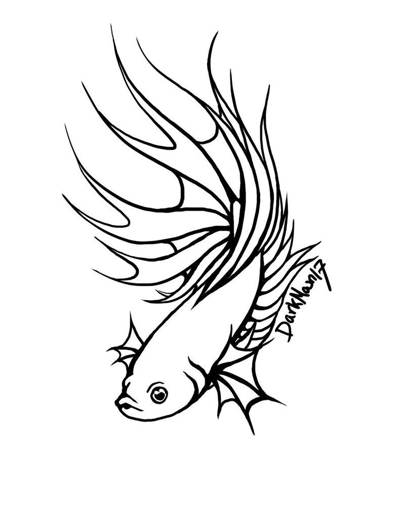 788x1013 Betta Splenden Ii By Atomdesigns. Image Titled Draw A Betta Fish
