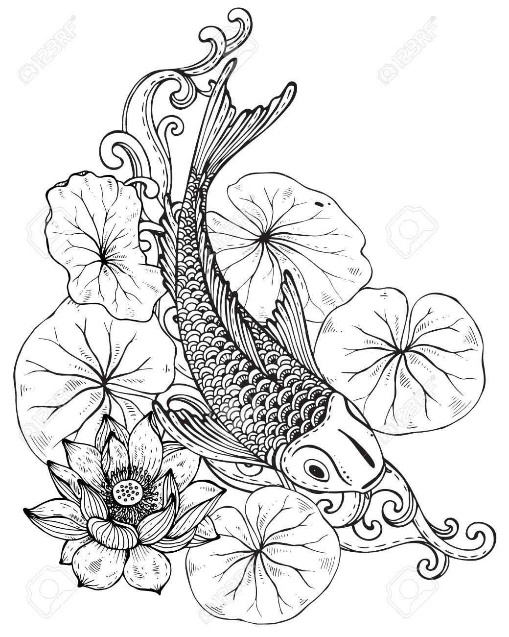 1040x1300 Hand Drawn Vector Illustration Of Koi Fish (Japanese Carp)
