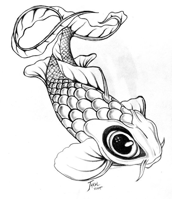 564x651 Image Result For Japanese Coy Fish Drawing New School