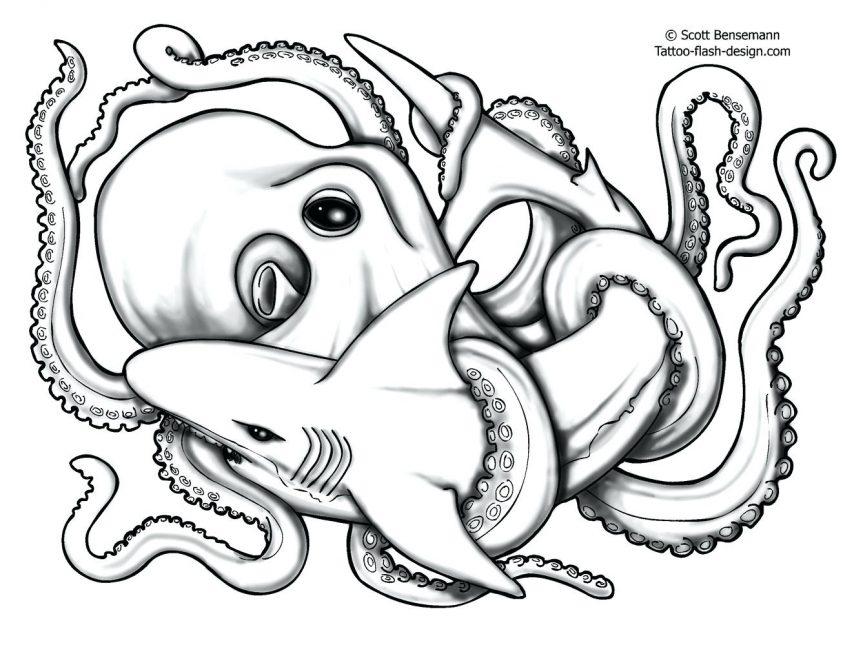 863x645 All Images To Grey Fish And Octopus Tattoos For Men Koi Outline