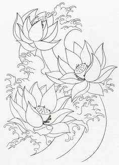 236x325 Lotus Flowers Drawings