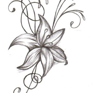 300x300 How To Draw An Orange Blossom Flower Step By Step Tutorial. Apple