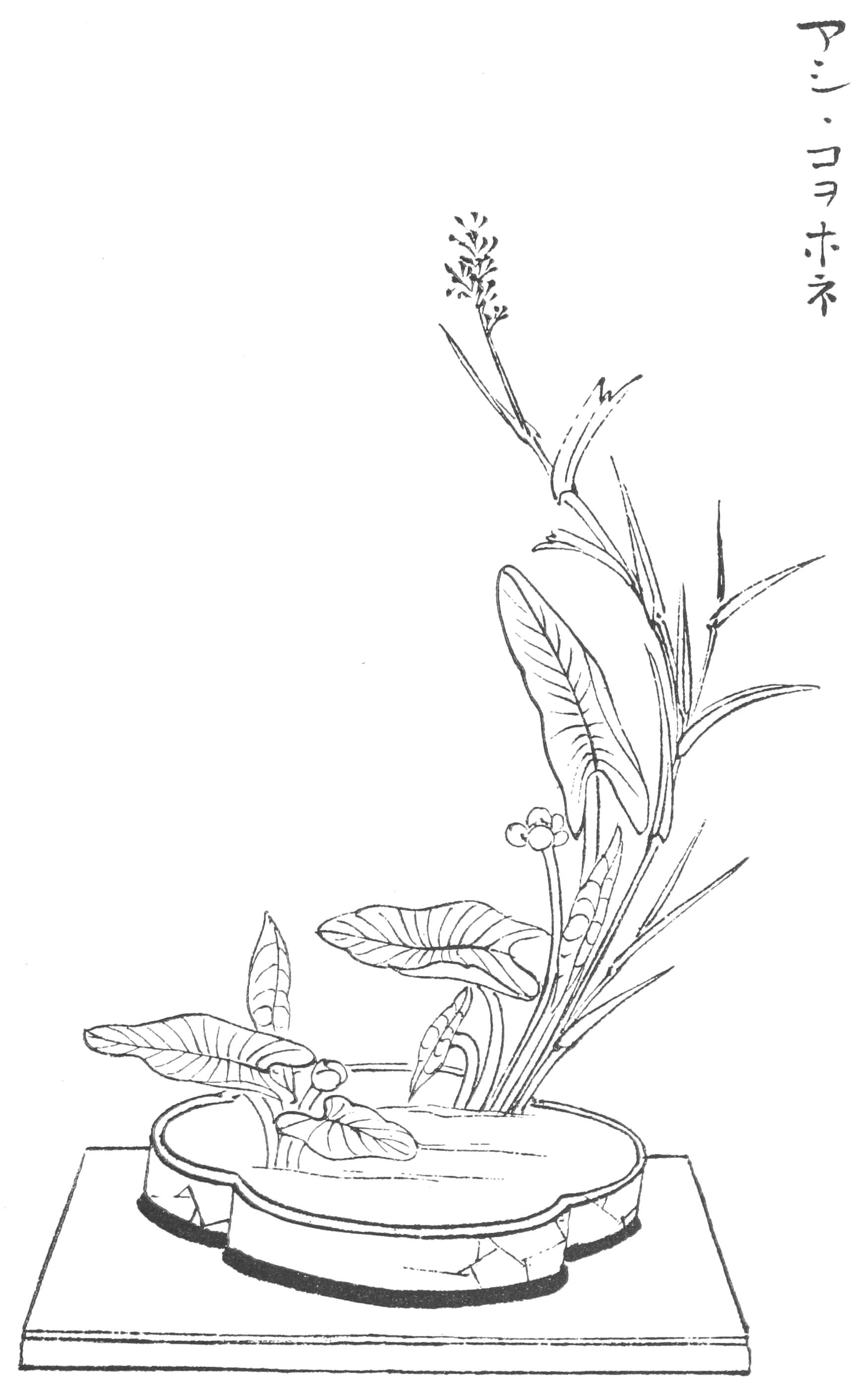 1750x2795 Filejapanese Flower Arrangement P095.png