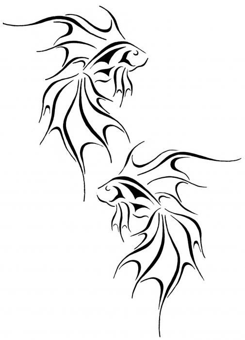 505x700 Fantasy Goldfish Drawing