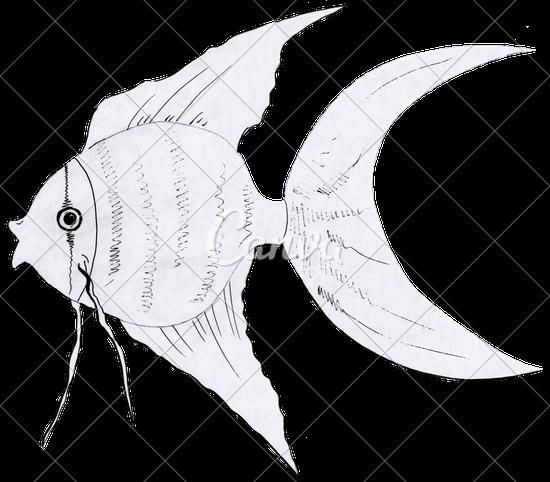 550x482 Hand Drawing Goldfish Black