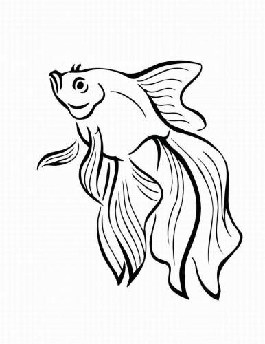 386x500 Tropical Fish Outlines