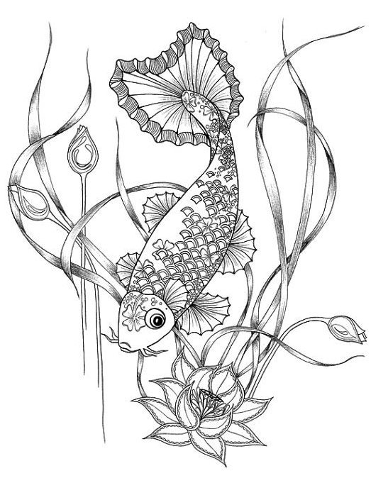 547x674 Koi Carp Fish Coloring Pages