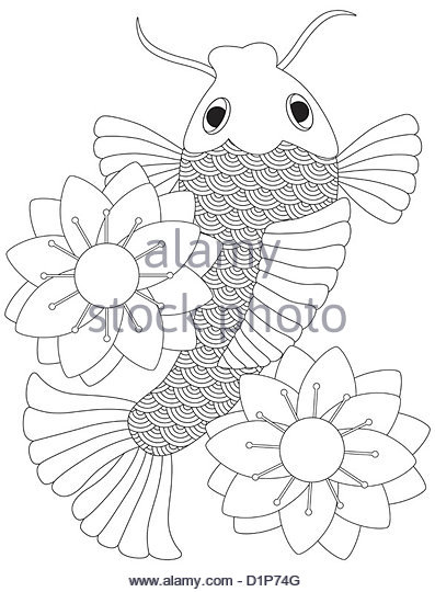 397x540 Koi Fish Black And White Stock Photos Amp Images