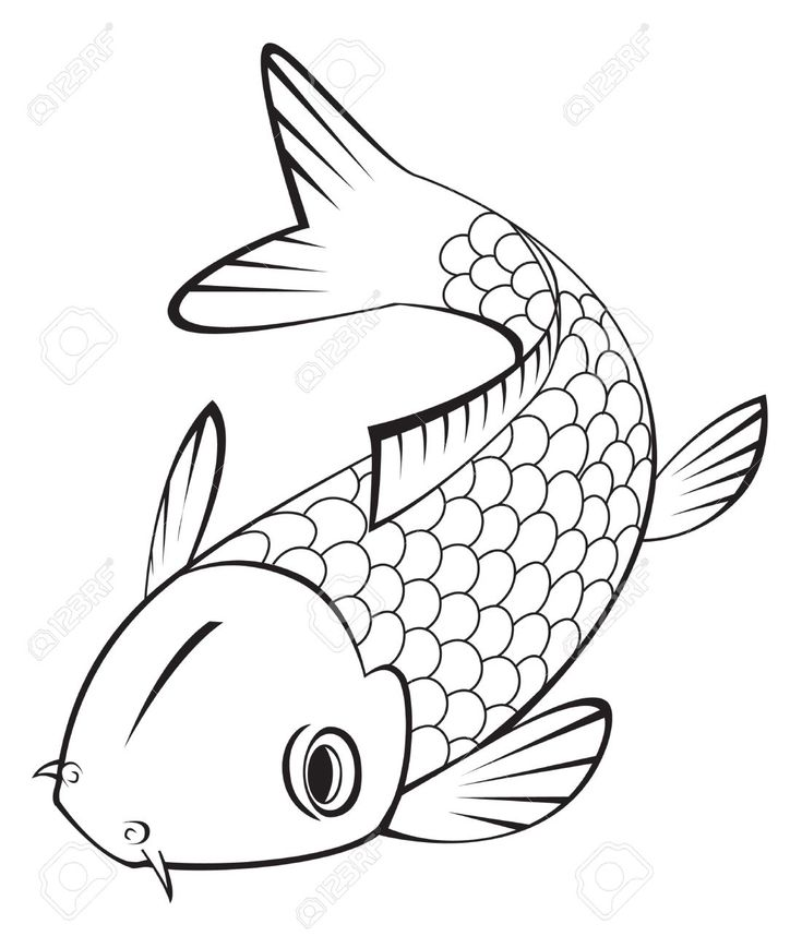 735x869 Drawn Koi Amazing Fish 3363066