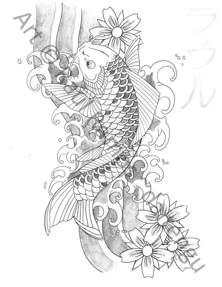 736x954 27 Best Fish Tattoo Drawings Images On Tattoo Drawings