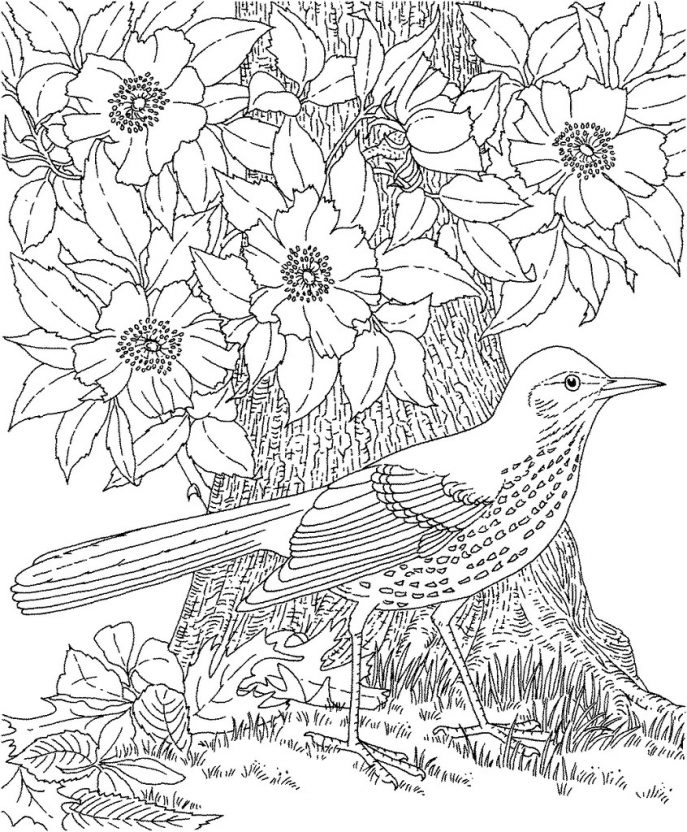 687x832 Coloring Landscape Coloring Book Japanese Witht Fuji