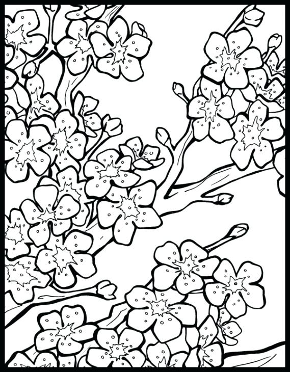 569x730 Japanese Lantern Coloring Page Jack O Lantern Coloring Sheets