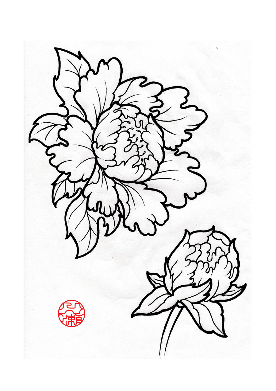 Japanese lotus drawing at getdrawings free for personal use 900x1273 drawn peony line drawing izmirmasajfo Gallery