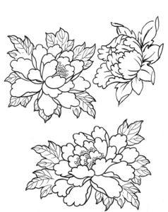 asian floral of designs Photos