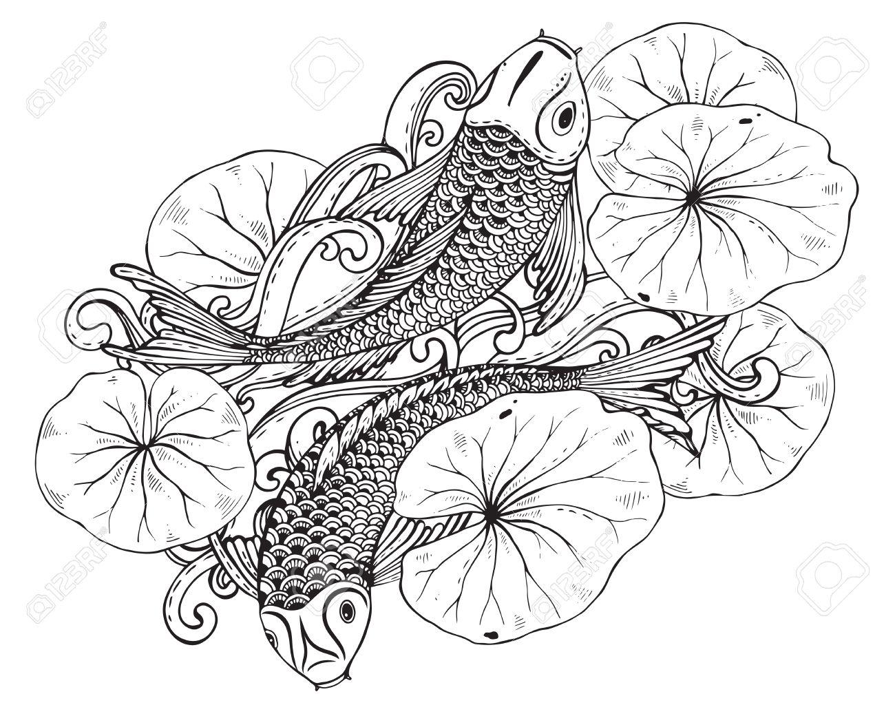 1300x1040 Hand Drawn Vector Illustration Of Two Koi Fishes (Japanese Carp