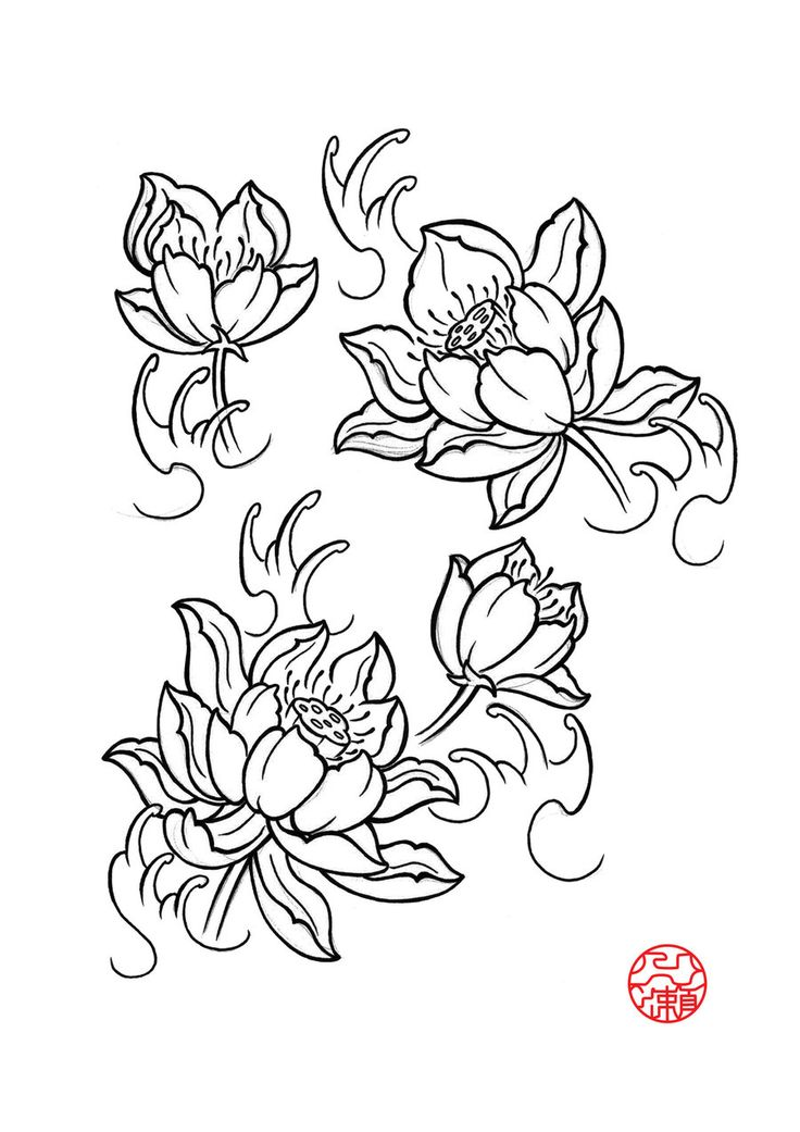 japanese lotus drawing at free for. Black Bedroom Furniture Sets. Home Design Ideas