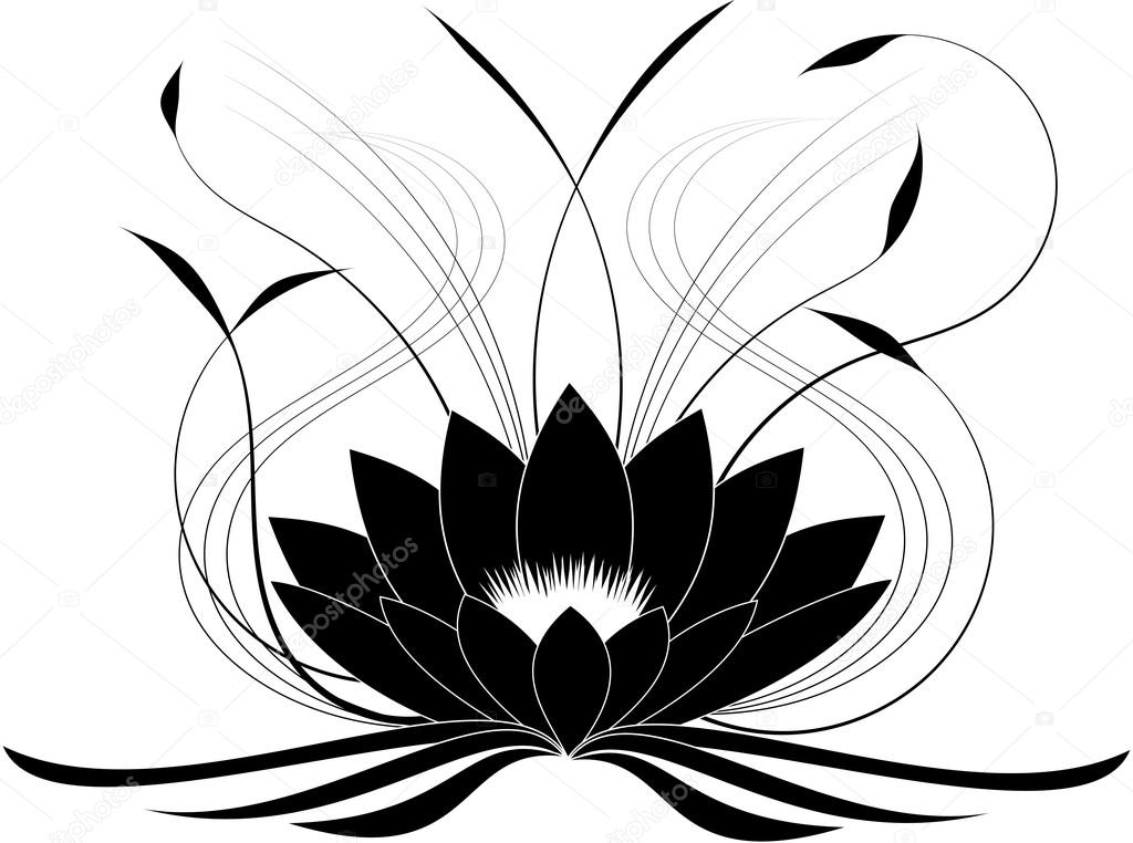 1024x762 Black Japanese Lotus Stock Vector Pyty