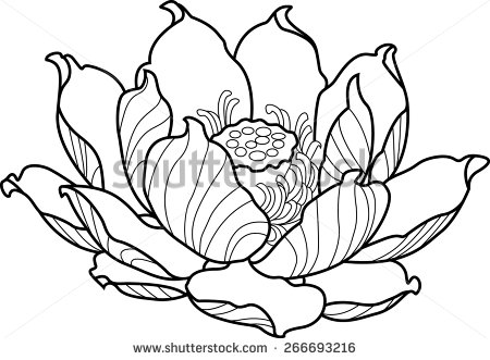 450x331 Black Silhouette Outline Lotus. Vector Tattoo Illustration