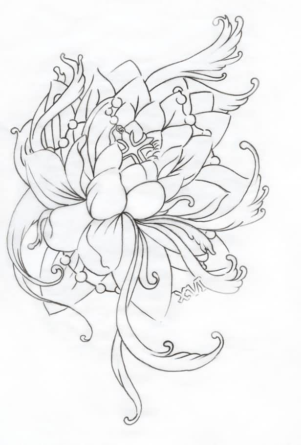 Japanese Lotus Flower Drawing