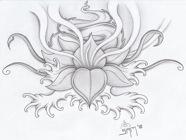 640x483 Drawn Elower Lotus Blossom