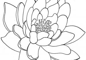300x210 Japanese Flower Drawing