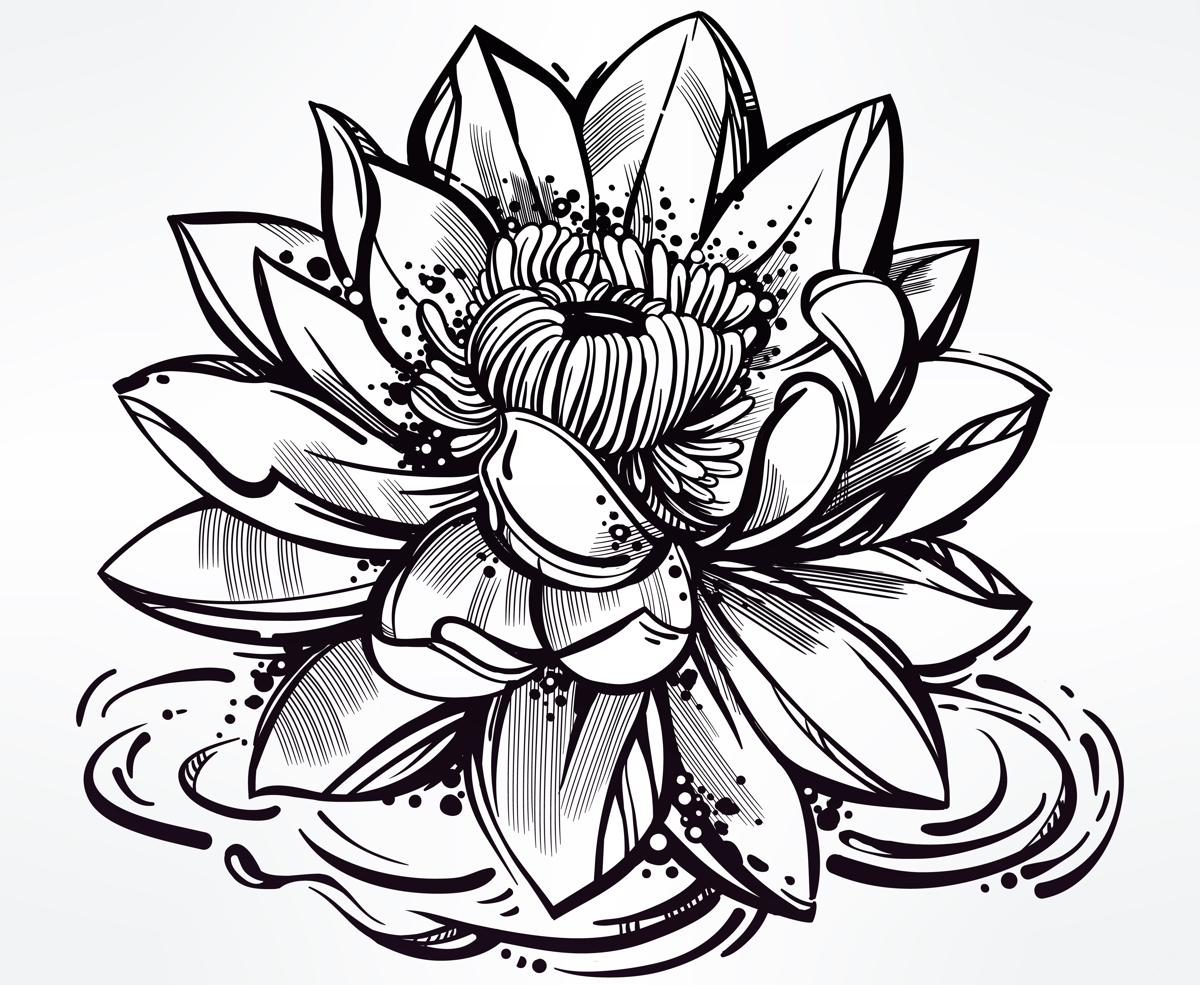Japanese lotus flower drawing at getdrawings free for personal 1200x985 japanese flower tattoos izmirmasajfo